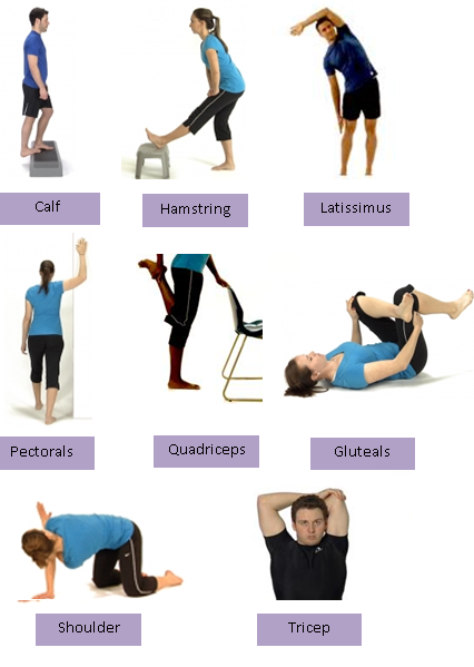 Stretching - the Why, When and How